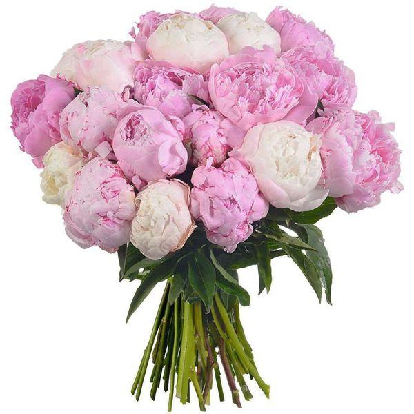 Bouquet rond 20 PIVOINES
