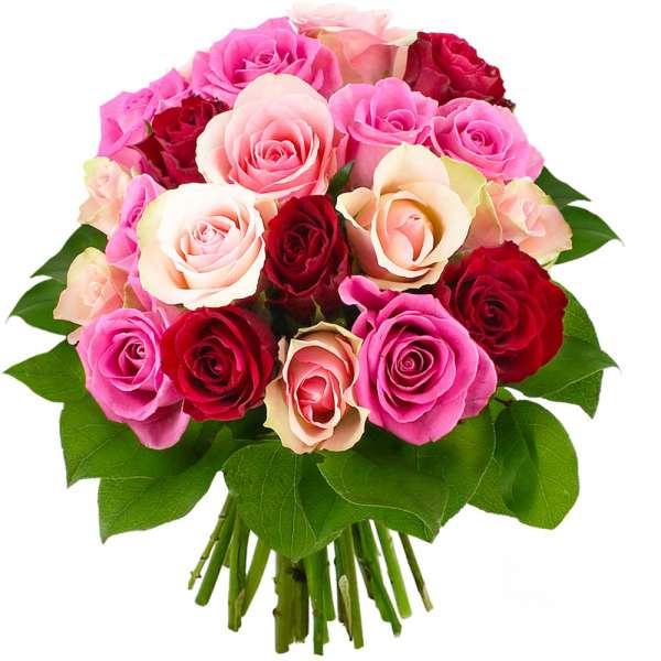 Bouquet de roses 20 ROSES ROSES FUCHSIAS ET ROUGES