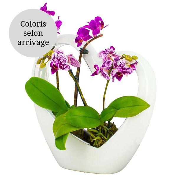 Orchidée COEUR BLANC EN CERAMIQUE ET SES 2 MINI-ORCHIDEES