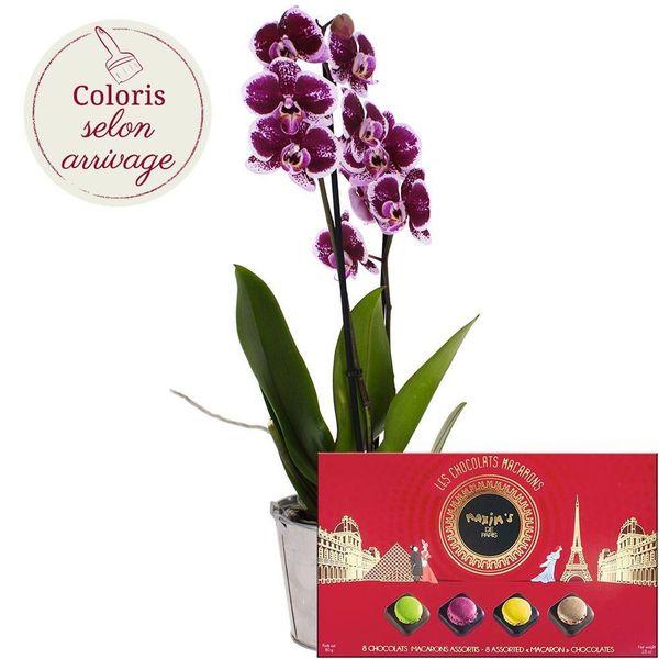 Cadeaux Gourmands ORCHIDEE + COFFRET MACARON