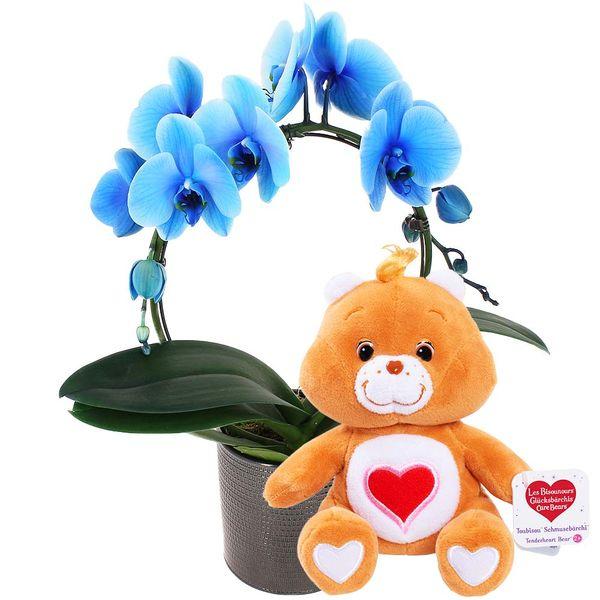 Cadeaux Naissance ORCHIDEE BLEUE + POT EN CERAMIQUE + BISOUNOURS