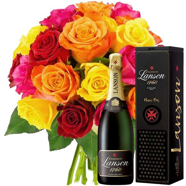 Cadeaux insolites 20 ROSES MULTICOLORES + CHAMPAGNE + MU