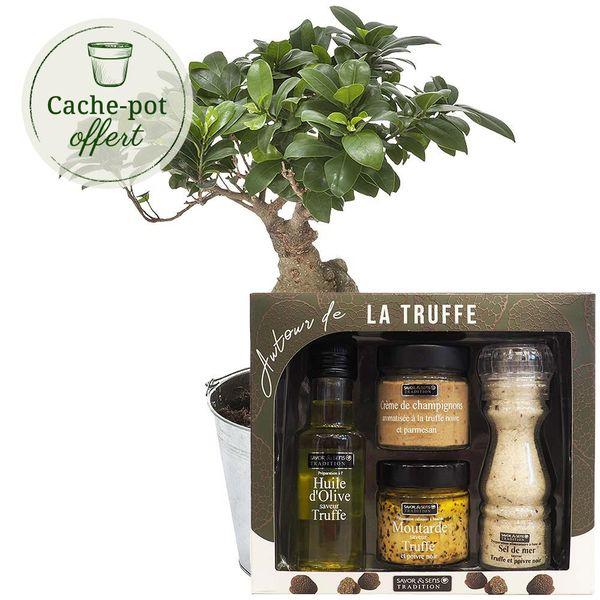 Cadeaux Gourmands BONSAI + AUTOUR DE LA TRUFFE