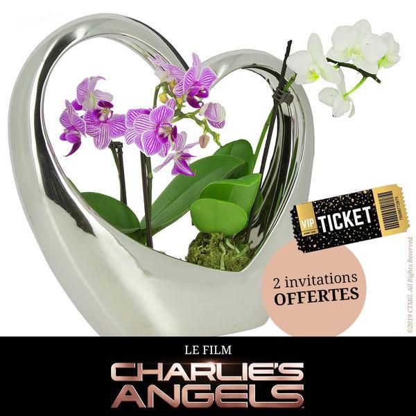 Orchidée COEUR ARGENTE + 2 MINI-ORCHIDEES + INVITATIONS