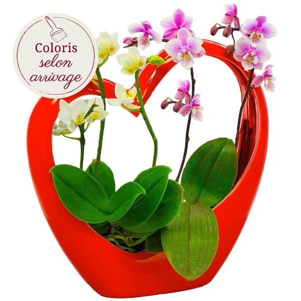 Orchidée COEUR ROUGE EN CERAMIQUE ET SES 2 MINI-ORCHIDEES