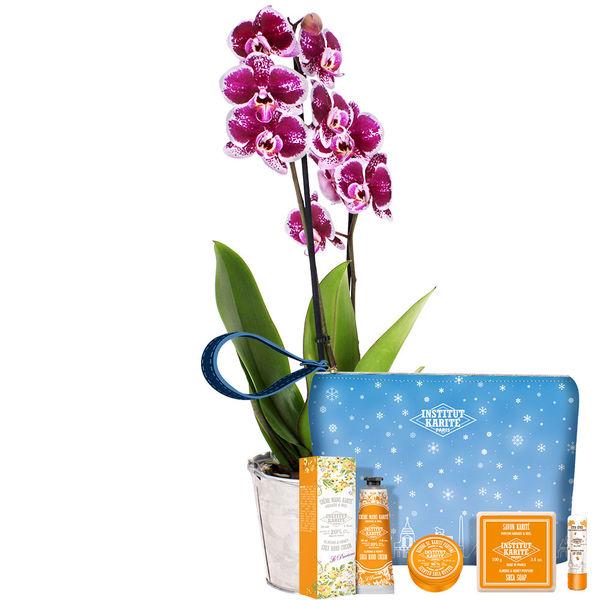 Cadeaux Bien-Etre ORCHIDEE 2 BRANCHES + TROUSSE BIEN ETRE AMANDE ET