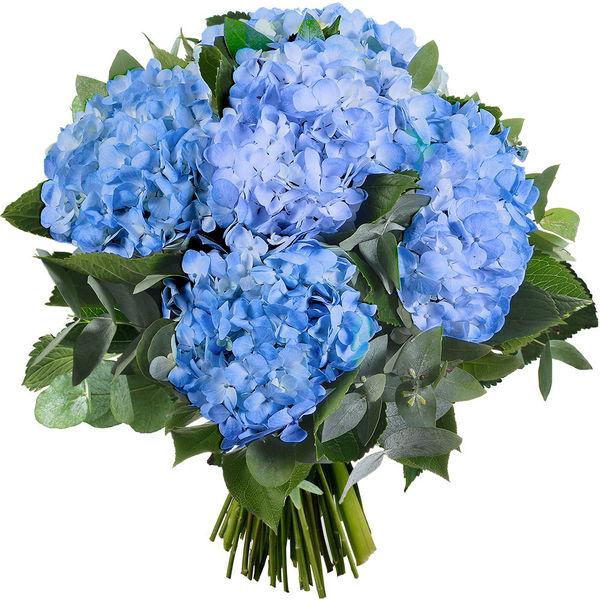 Bouquet rond BOUQUET DE 5 HORTENSIAS BLEUS