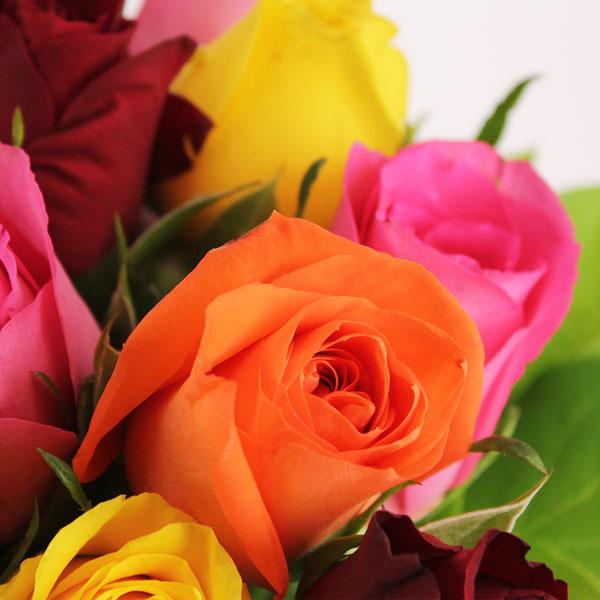 Bouquet de roses 20 ROSES MULTICOLORES