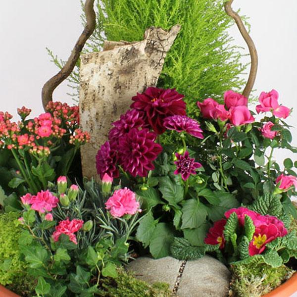 Plantes Deuil COMPOSITION ETERNITE