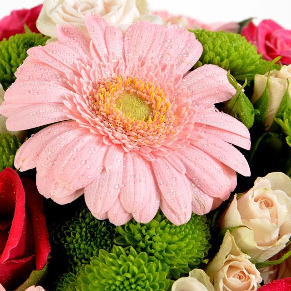 Bouquet rond DECOUVERTE