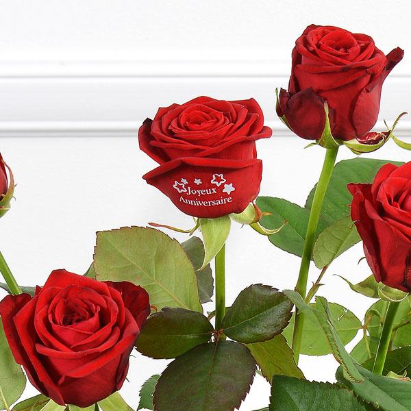 Bouquet de roses 5 + 1 ROSE MARQUEE JOYEUX ANNIV 60CM