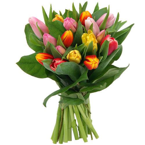 tulipe bouquet
