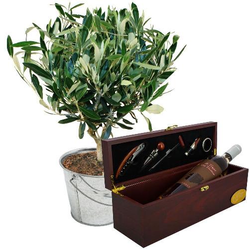 Cadeaux insolites OLIVIER + COFFRET OENOLOGIQUE