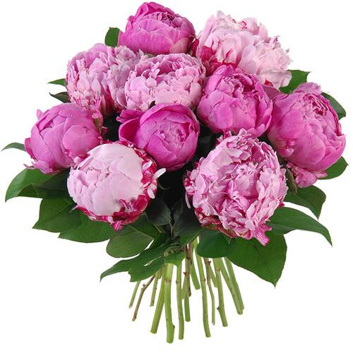 Bouquet rond VENUS