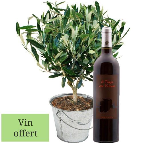 Cadeaux insolites OLIVIER + VIN ROUGE DU LUBERON 75CL