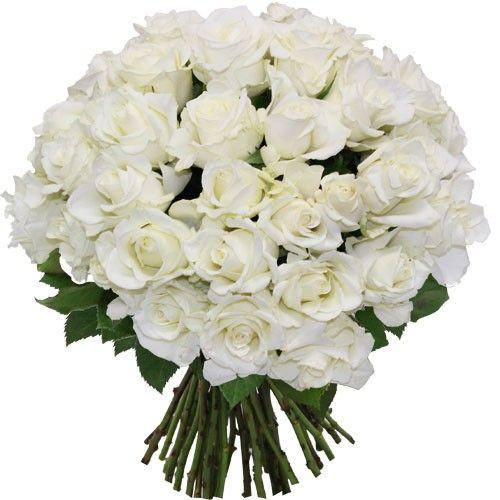 30 Roses Blanches Florajetcom