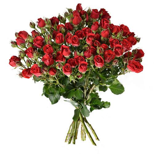 Bouquet de roses ROSES BRANCHUES ROUGE