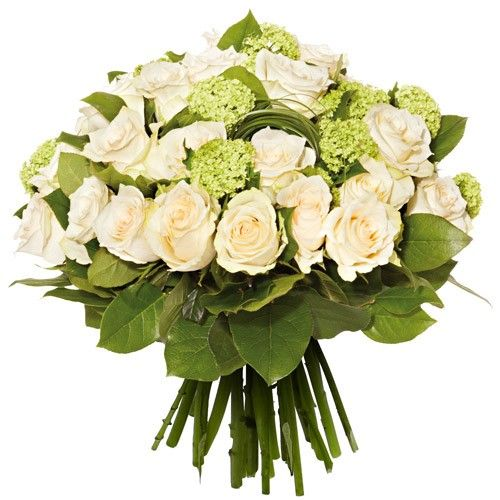 Les Roses REVERIE