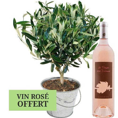 Bons plans OLIVIER + VIN ROSE LUBERON