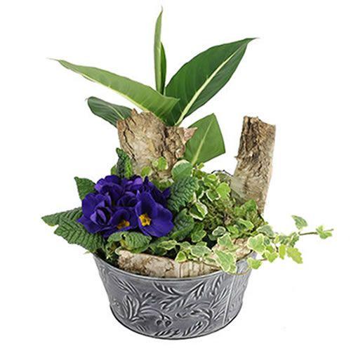 Plantes Deuil COMPOSITION COMMEMORATION