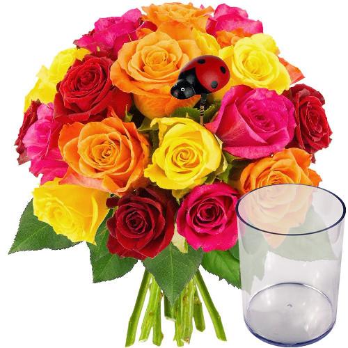 Cadeaux insolites 20 ROSES + VASE + COCCINELLE