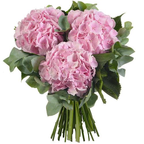 Bouquet rond LITCHI