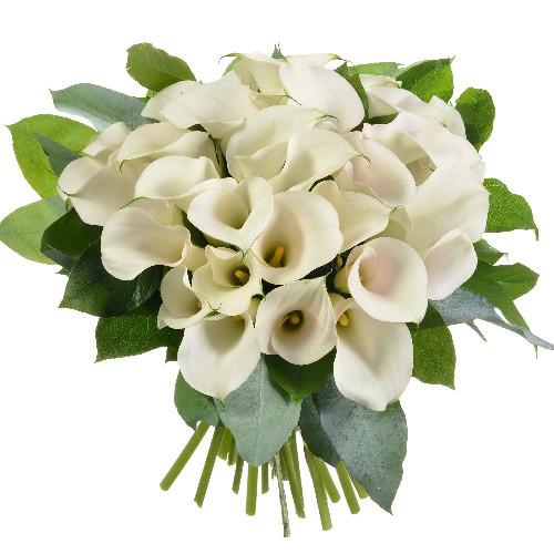 Bouquet rond BOUQUET DE CALLAS