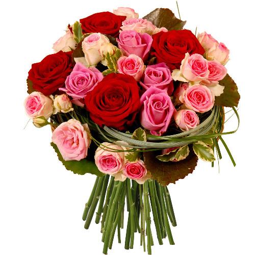 Roses rouges et roses rose livraison express florajet for Bouquet de rose