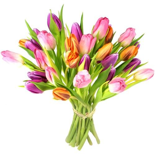 Bouquet rond IDYLLE