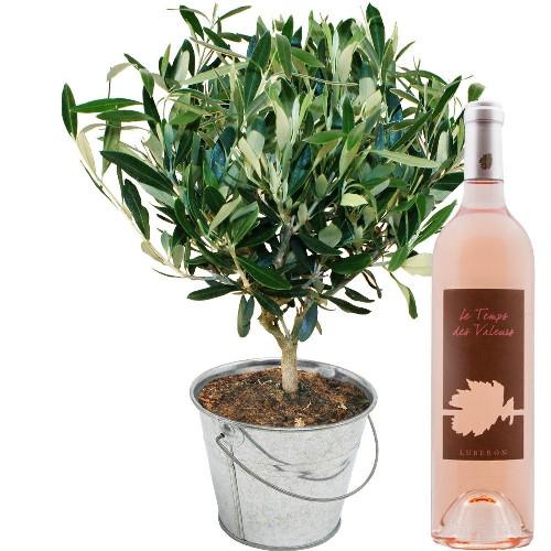 Cadeaux insolites OLIVIER + VIN ROSE