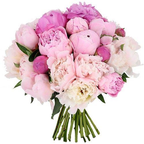 bouquet rond 20 pivoines livraison express florajet. Black Bedroom Furniture Sets. Home Design Ideas